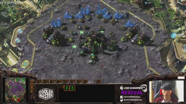 Stream by Revival - StarCraft II: Heart of the Swarm