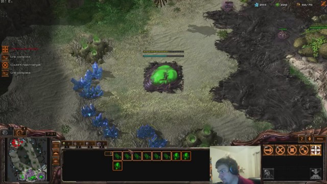 Stream by SchniederZSc2 - StarCraft II: Heart of the Swarm