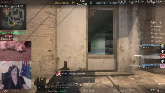 Stream by Aussie_Lisa - Counter-Strike: Global Offensive